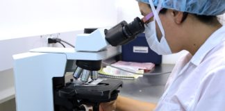 A medical scientist looks through microscope