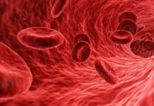 Blood cell, thalassemia